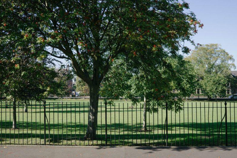 Lomond Park